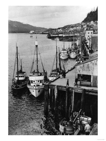 Fishing Boats along shore in Southeastern Alaska: Alaska Photographers, Alaska Beauty, Day Alaska, Fish Boats, Southeastern Alaska, Fishing Boats, Allposters Com, Alaska Boats, Alaska Prints