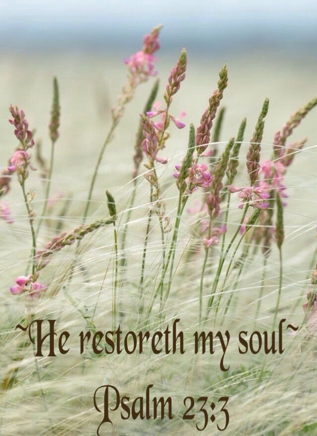 Psalm 23:3 - God Loves You - Share or Like if you feel his love - http://www.facebook.com/pages/God-Loves-You/177820385695769