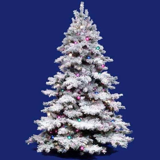 25+ best Christmas trees on sale ideas on Pinterest | Christmas ...