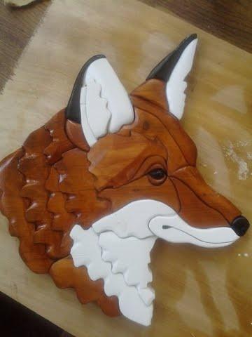 Red Fox head shot / $50.00