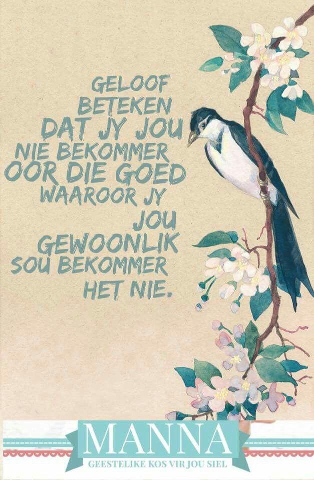 Geloof x bekommernis #Afrikaans  (MANNA) #Faith #InANutshell #worry