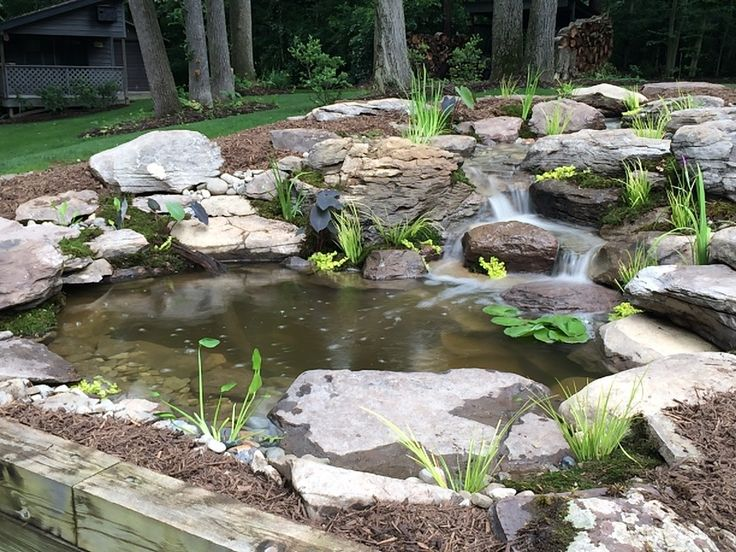 36 best backyard ponds fish ponds koi ponds for Fish pond features