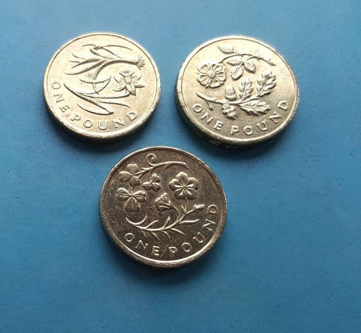 £1 Old Coins  Daffodil Leek  Shamrock  & Floral 2013 2014 £8.99 or Best Offer Ebay Uk Item Number 263554908794