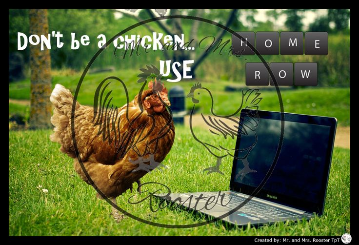 Funny typing poster for those hunt and peck students!