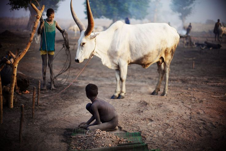 Photographer Tara Rice was unpacking the back of the truck outside the city of Juba, South Sudan, when someone fired an AK-47 into the air beside her. See her photos of the Mundari tribe here.