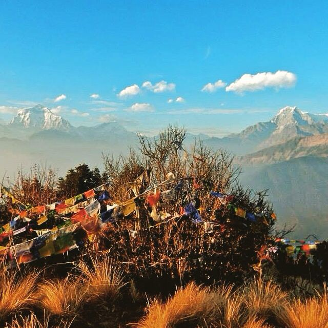Wish I was there again. Poon hill
