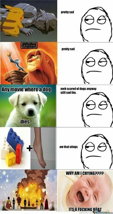 Haha funny meme :D but i always cry when a dog dies in a Film and i like one Piece and dogs :)