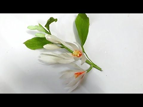 DYI   How to make paper flower   Magnolia champaca   by crepe paper