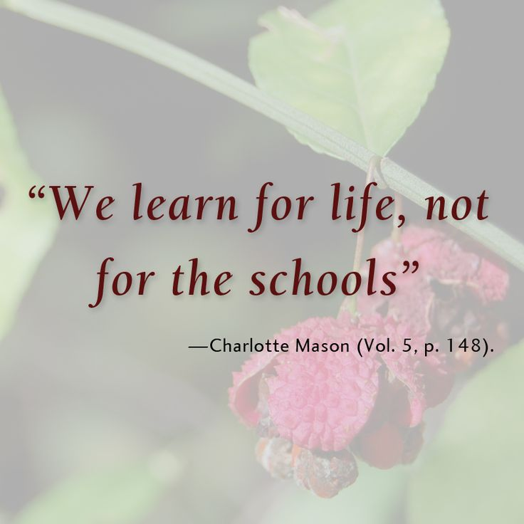 """""""We learn for life, not for the schools."""""""