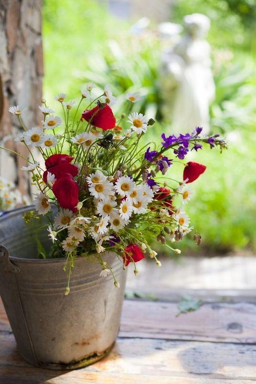 Fresh wild flowers