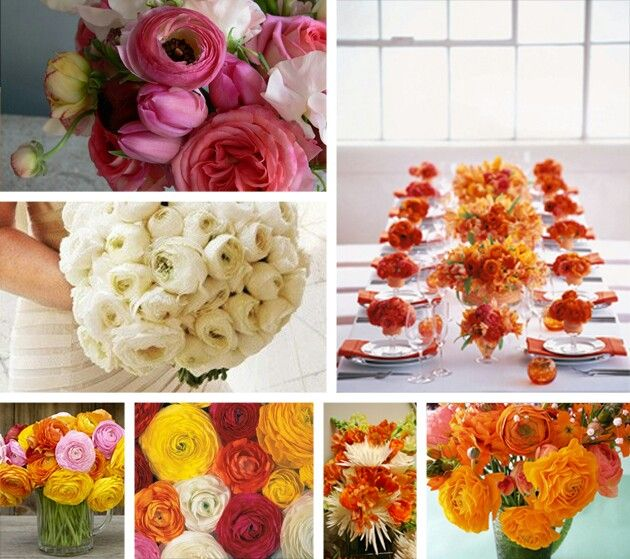 Flower ideas ..ranunculus