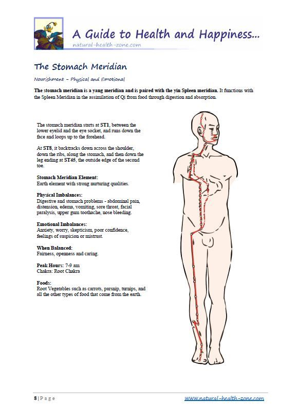 The Body Meridians Book with Meridian Flows and Acu-Points PDF