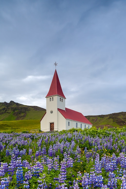 Church of Lupine What a wonderful and scenic location for a church. Iceland has many of these churches in amazing spots. You could do an entire trip and just take pictures of them :) This particular church sits on a hillside above the town of Vik.