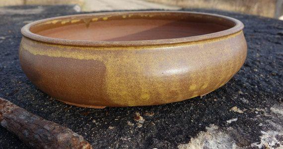 Bonsai Schale Bonsai Topf oval 285 x 24 x 7 cm von bothendsburning