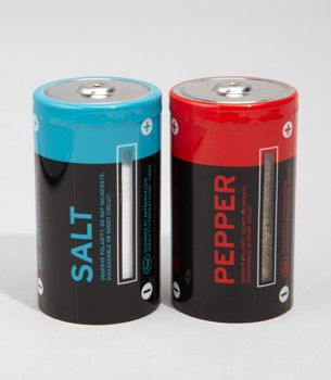 salt and pepper shakers: Batteriesshap Salts, Salts Peppers Shakers, Gifts Ideas, Sp Shakers, Fun Stuff, Unique Gifts, Saltpepp Shakers, Dcell Battery, Battery Salts
