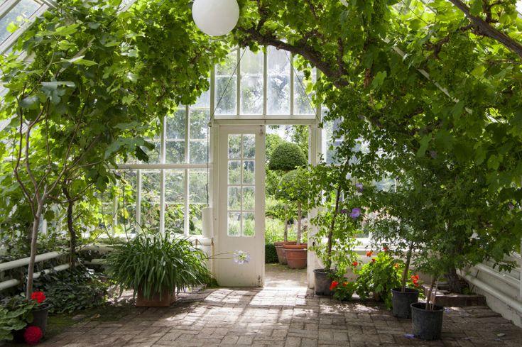23 Wonderful Backyard Greenhouse Ideas - http://www.homestratosphere.com/backyard-greenhouses/#utm_sguid=163048,9c480689-6fdd-80c2-7e22-a208f223c99d