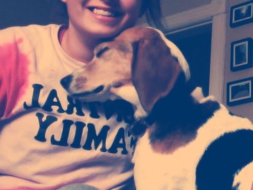 Beagles. dogs are a girl's best friend.