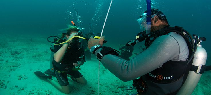 Nous sommes un centre de plongée PADI offrant des cours de l'initiation au Divemaster (guide de plongée) privilégiant l'amusement, la sécurité et le service clientèle. http://fr.czonediver.com/le-cours-open-water-koh-tao/