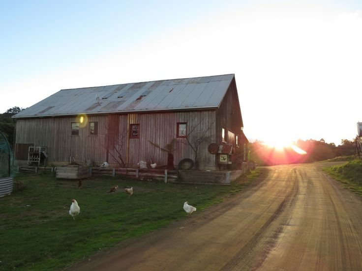 A gorgeous farm stay in the Huon Valley