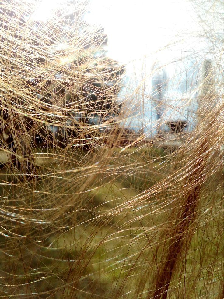 #hair #A #2 #cobweb
