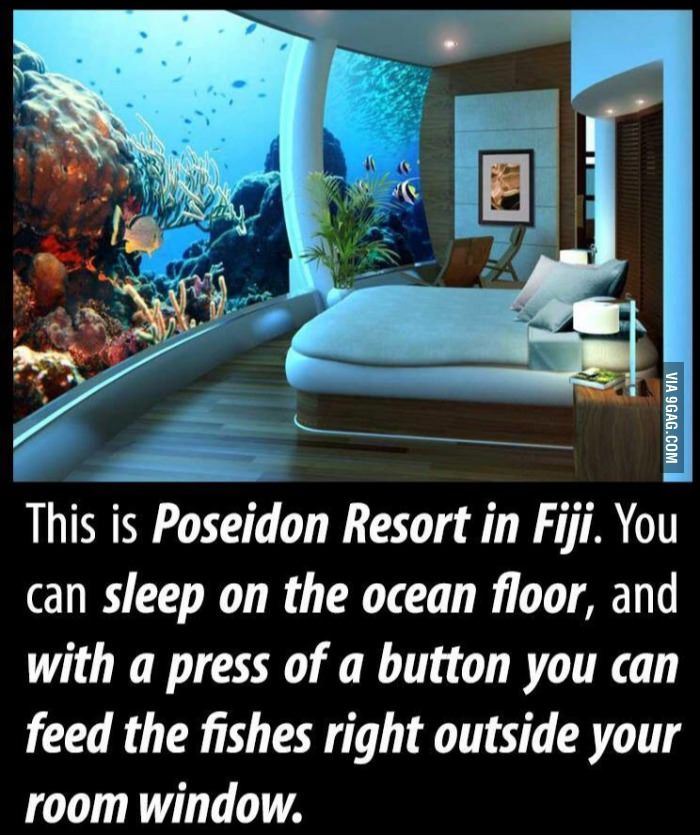 Sleeping with the fishes - 9GAG