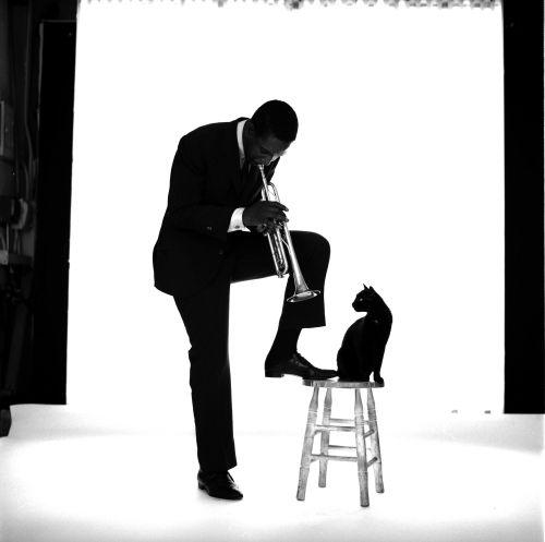 Kenny Dorham by Jerry Schatzberg    my utmost favorite photograph since april 8, 2011