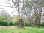 GREEN POINT | Vacant Land | For Sale @ domain.com.au