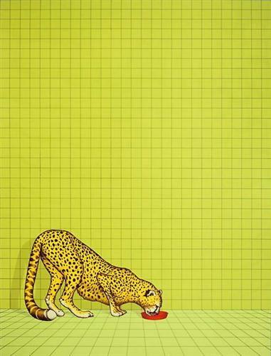 Gepard - Dieter Asmus