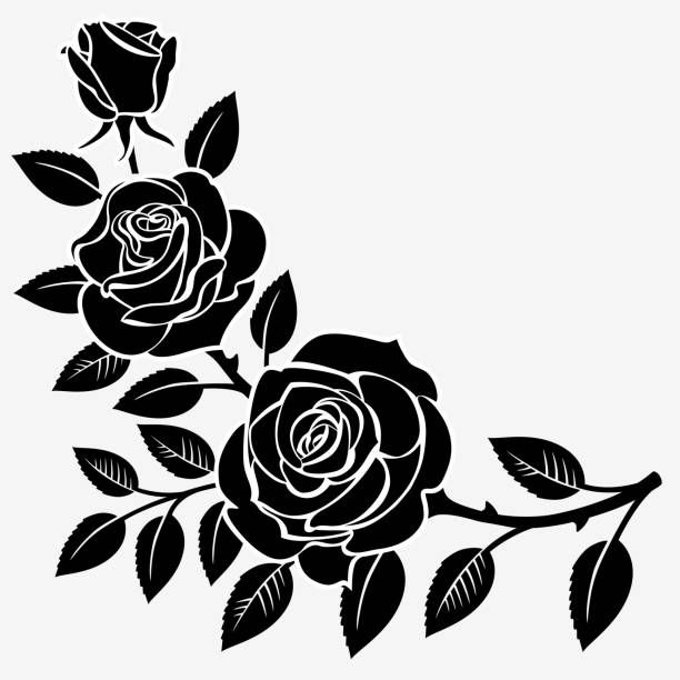 Branch Of Roses On A White Background Rose Stencil Roses Drawing Silhouette Art