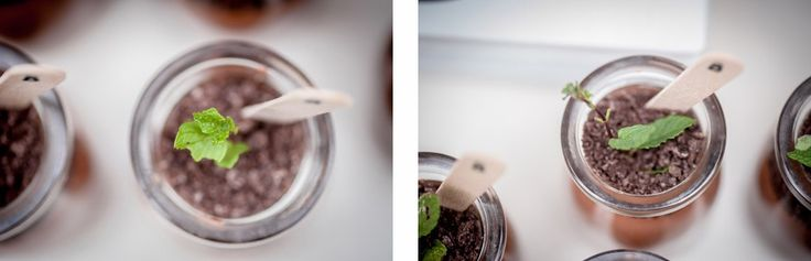 Sweet Magazine - Unique Ideas for a Boy's Baby Shower - Chocolate Mousse Pots that look like plants!