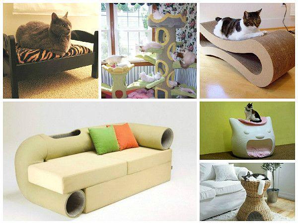 Интерьер для кота и кот в интерьере - 8 правил кошачьего декора