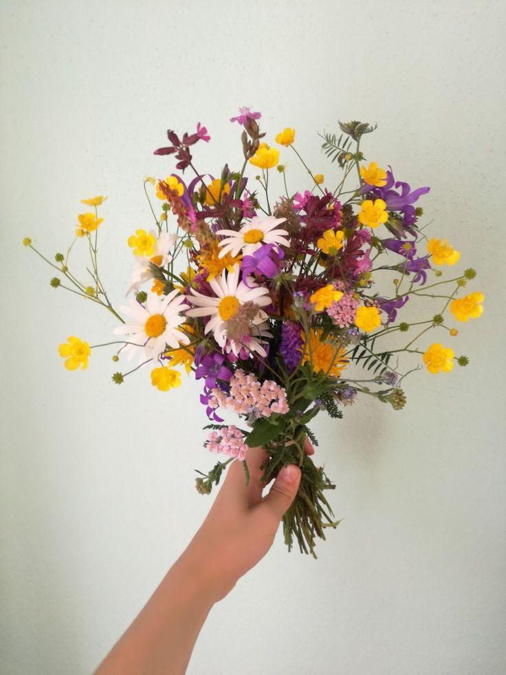 Flowers. Flower bouquet. Wild flowers. Meadow. Colors.