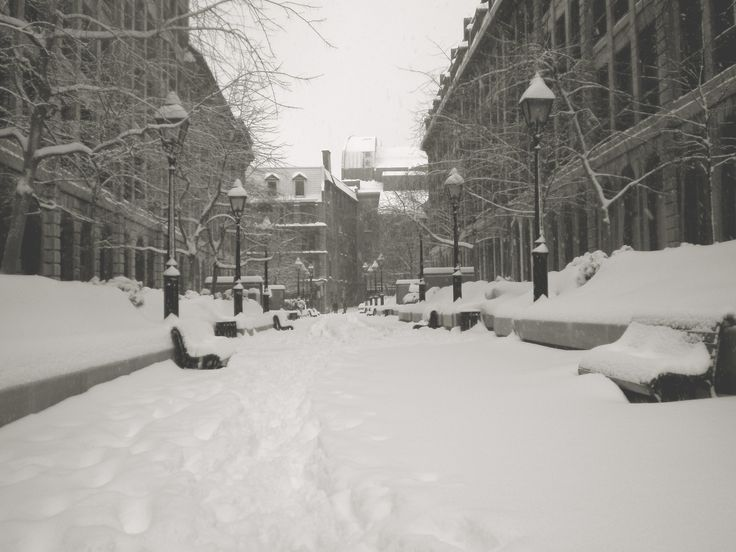 The Montreal Snowfall Record Is Broken (2012)
