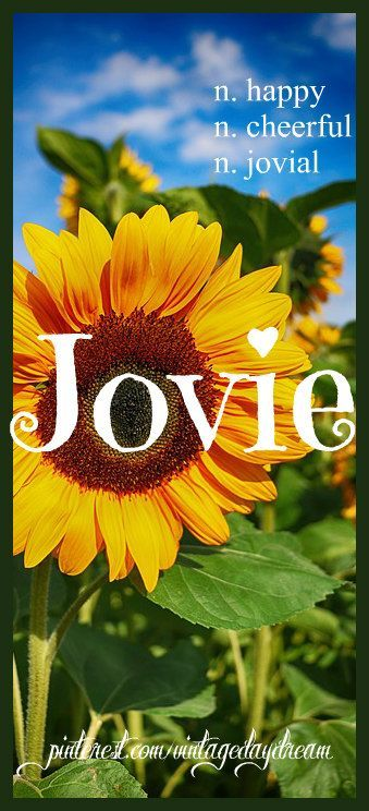 Baby Girl Name: Jovie. Meaning: Happy; Cheerful; Jovial. Origin: English. https://www.pinterest.com/vintagedaydream/baby-names-by-me-vintagedaydream/