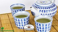 Benefits of Green Tea for Boosting Antiviral Immune FunctionUnlike most antiviral drugs, green tea appears to work by boosting the immune system to combat diseases such as genital warts (caused by HPV) and the flu (caused by the influenza virus). https://www.youtube.com/watch?v=7MhDpQKjYE8&t=42s