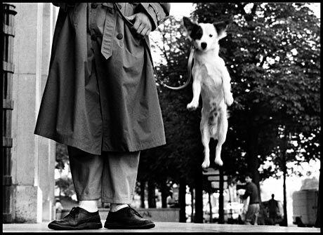 Eliott Erwitt, Paris, France, 1989. © Eliott Erwitt/Magnum Photos.