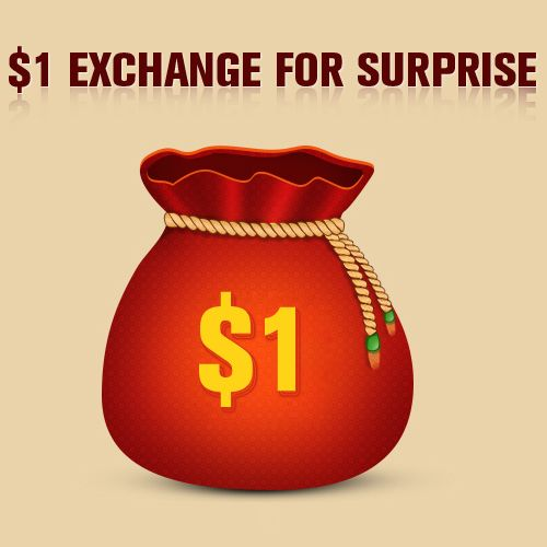 $1 exchange for Surprise!--12.02 carnival bonus!Add it into cart with other products! Enjoy shopping,good luck! $1.00