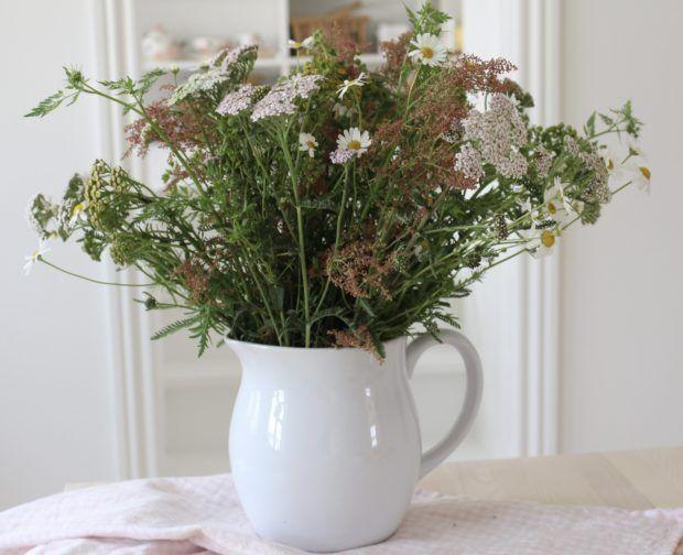 Sommer og vilde blomster - Mit landliv