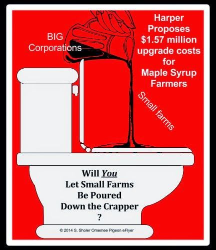 What can I say: I'm passionate about small business! Small farm Maple Syrup producers  being poured down toilet Big Corporations left in jug