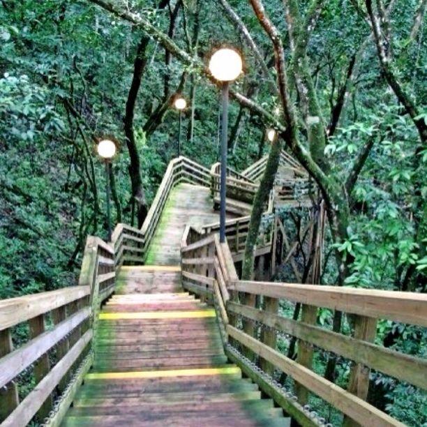 Parque De Las Cavernas Del Rio Camuy, Camuy, Puerto Rico — by Osvaldo Díaz Vilella. #nature #puertorico