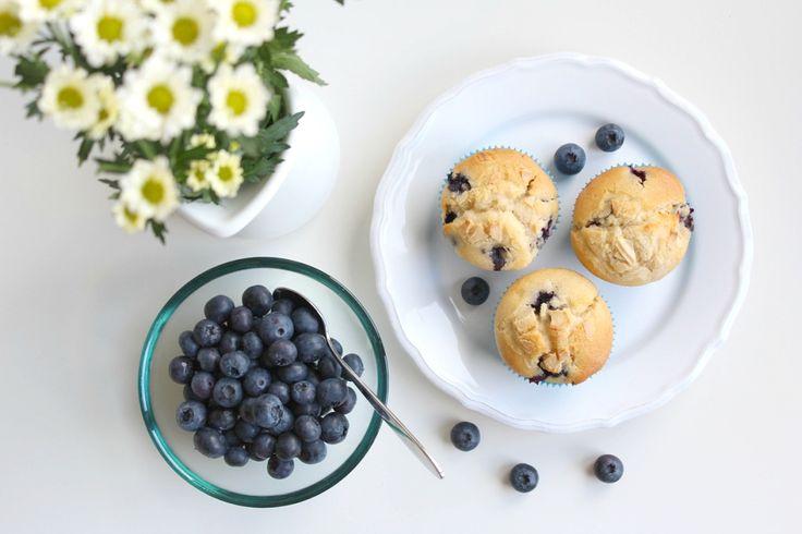 Blaubeer-Muffins  www.gluecksfrucht.de