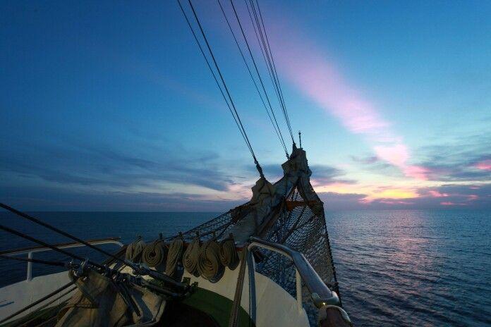 Sailing Sea Peace