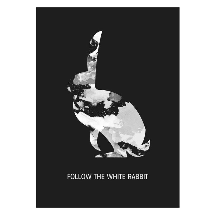 Grafische Poster Follow the White Rabbit