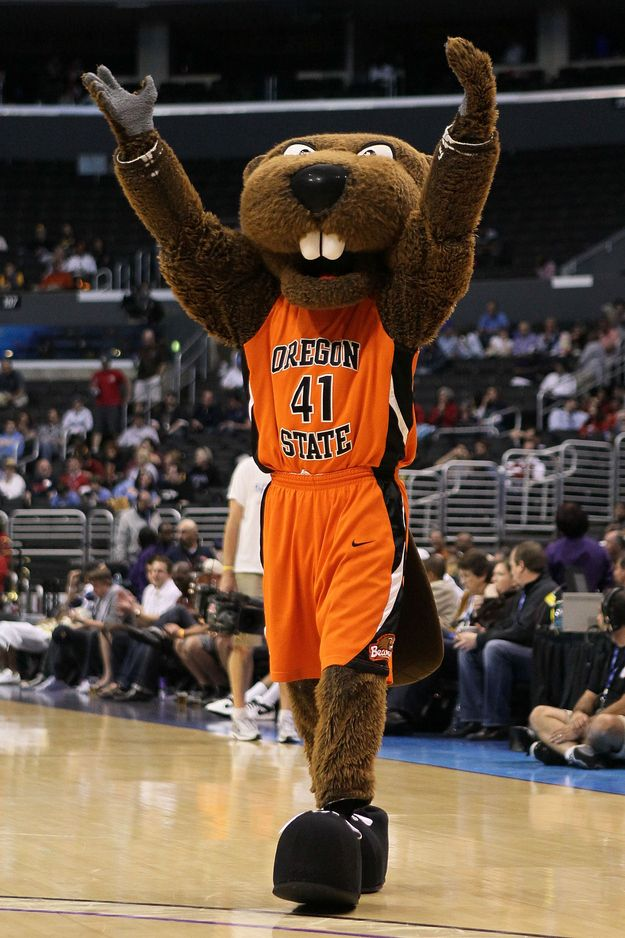 Oregon State University: Benny Beaver | The Definitive Ranking Of The Mascots Of The Pac 12