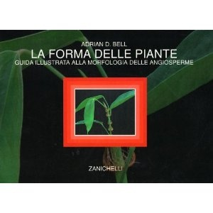 La forma delle piante. Guida illustrata alla morfologia delle angiosperme: Amazon.it: Adrian D. Bell, F. Bracco: Libri