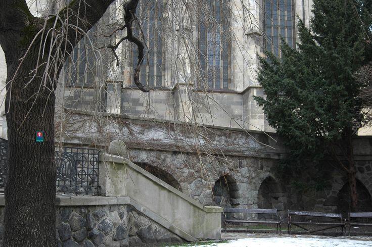 Old city - Dom Sv. Martina