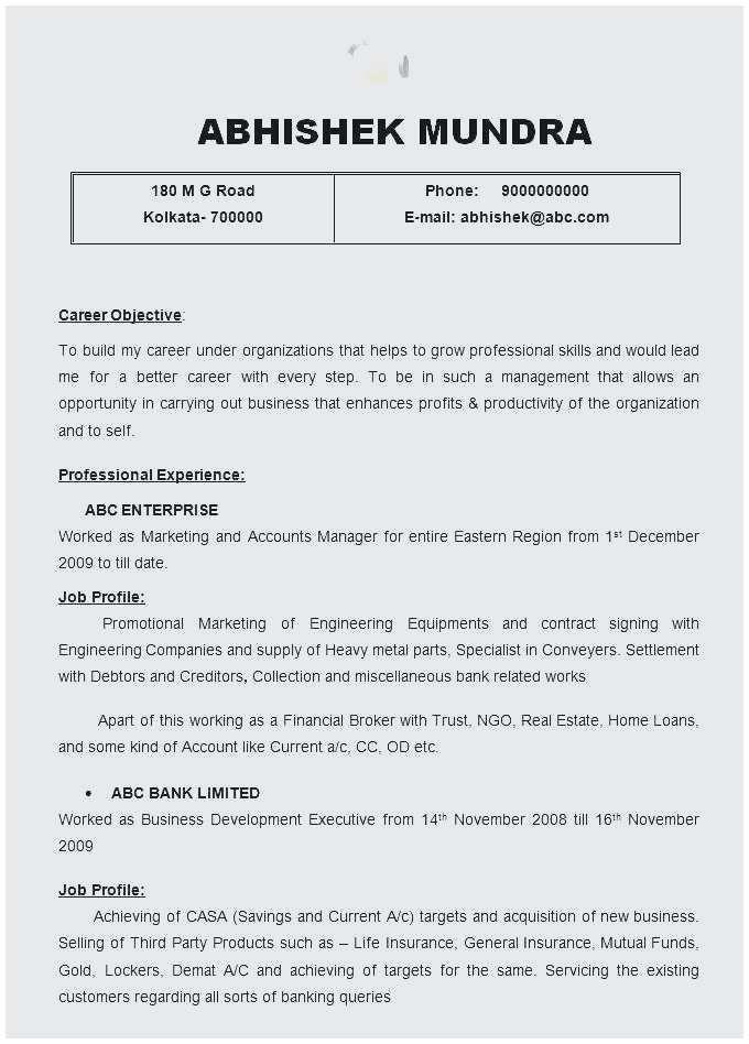 26 Resume Executive Summary Example Di 2020