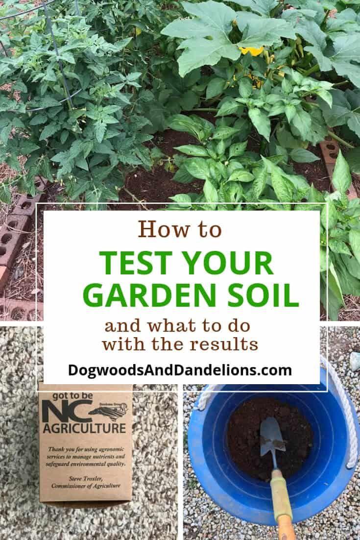Testing Your Garden Soil Garden Soil Gardening For Beginners