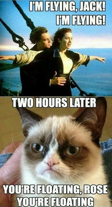 Grumpy cat is such a downer