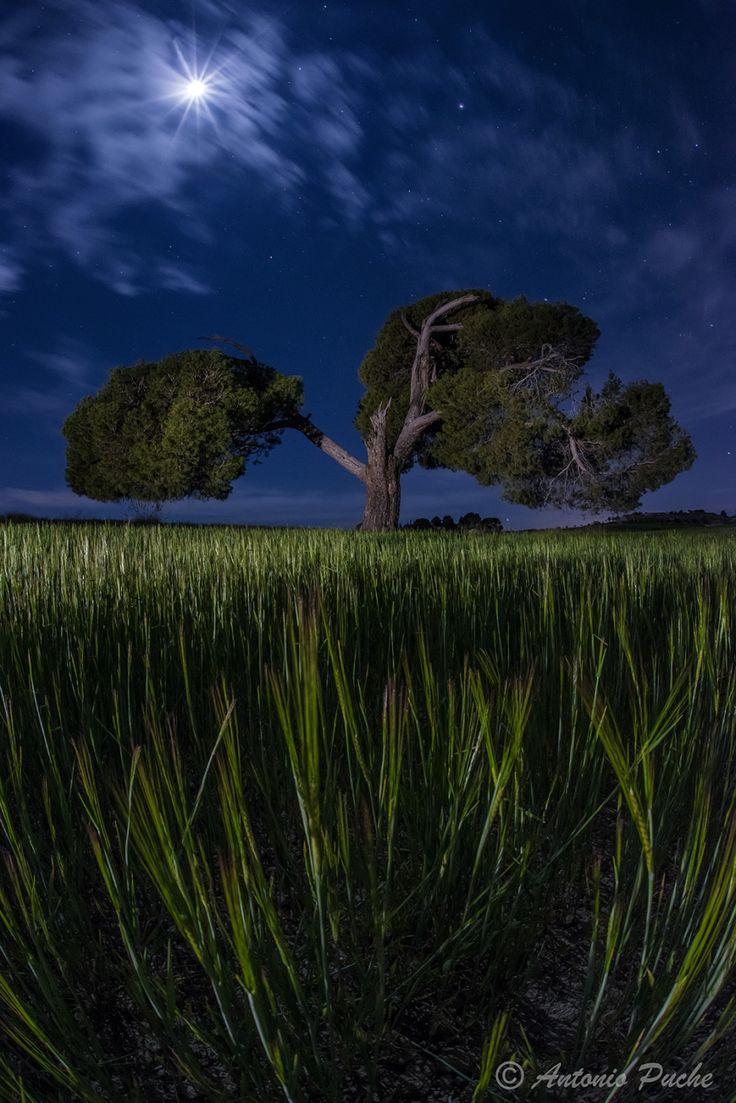 Fantasmas del pasado by ANTONIO PUCHE  on 500px